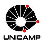 Logo da Unicamp